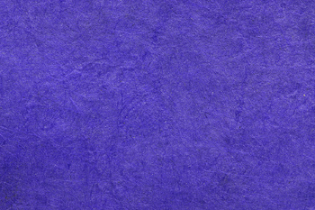 This has replaced white as most popular color of underwear for Men & Women. What is it?